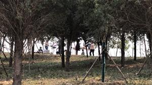 近日,在文昌生态园里面游玩,发现公园里多处有被出行的游人破坏的地方,绿化小苗,草坪被车碾压和踩坏的,