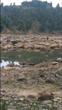 盐亭县禁渔期非法电鱼到底有没有人管?