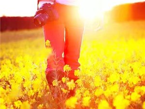 懂得珍惜�m世�g的�N�N�郏�才能�自己的世界春暖花�_。