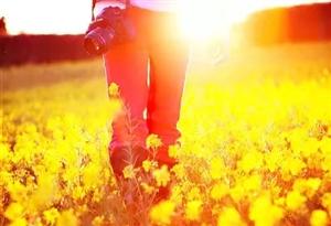 懂得珍惜尘世间的种种爱,才能让自己的世界春暖花开。