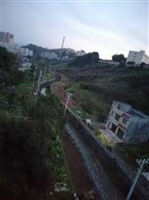 党校下面育红桥河道(两边已征改)建一条沿河健身路,多好啊!!既方便居民出行又健身