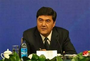 国家能源局原党组书记、局长努尔・白克力严重违纪违法问题进行了立案审查调查