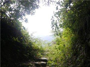"""""""江南最后的墨�""""徒步者的天堂――白�H古道近期出行"""