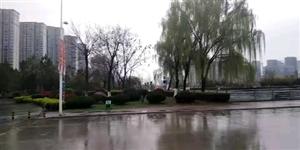 雨后的霍邱看着真的不孬,很有一番感觉……