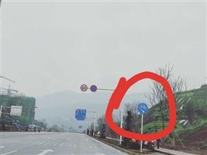 【已回复】闲着的非机动车道