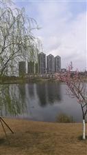 春回仁寿湿地公园