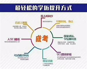 2019年广西成人高考北海函授站火热报名,报名联系:13878980573(微信同号)