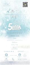 大成唯爱五周年感恩回馈!
