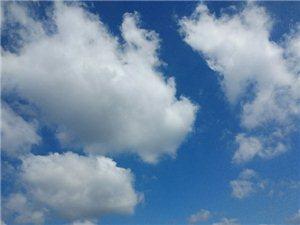 七十二变的小白云(第一辑)