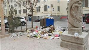 南苑华庭小区物业不清理垃圾,大院生活垃圾堆积如山,这样的物业有关部门该管管吧