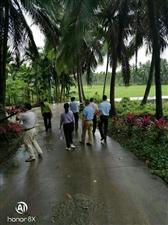 龙江镇博文、南面乡村振兴工作队前往石壁镇荔枝山村参观取经
