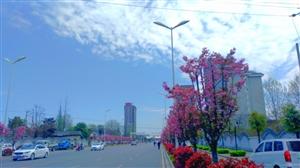 汉台区东新街(手机随拍)