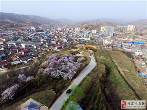 张家川在线受龙山镇政府邀请航拍三国街亭之战发生地西梁子