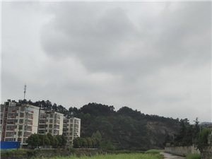 一声春雷,惊醒了春雨,惊醒了绿叶,也惊醒了万物。润物无声,期待着枝繁叶茂的时节!
