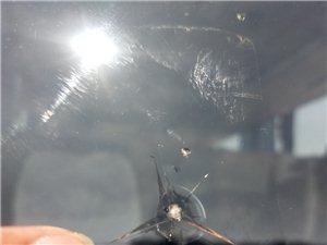 �V�h汽��躏L玻璃��I修�a中心,�S修服�针��13658032576���傅