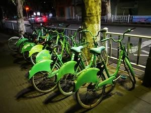 这是共享单车进入丹江口了吗?