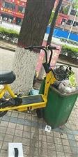 """微友爆料:蜜蜂单车差点被扔进垃圾桶,只是垃圾桶不够大。看后,完全被威尼斯人注册人的""""素质""""折服了!""""小蜜蜂"""""""