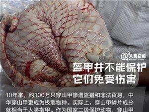 你愿为人类的朋友转发吗?今年来中国#海关查获濒危动植物500吨#