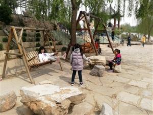 春夏之交的黄河边上(滨州)热闹非凡