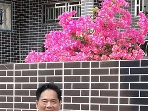 �l村的晨曦2019年4月20