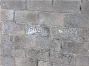 通许有没有卖这种砖的店?红色的或者黄色的,有的请致电18903785458