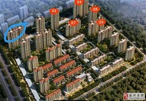 汤阴建业森林半岛所剩房源先到先得:126平米智能化南北通透27楼(送阁楼)170平米大四居室延河美宅
