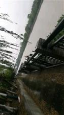 雨中散步顺路接丫头