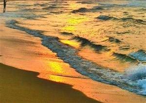 清晨那金色的海浪金色的沙滩