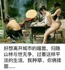 【青衣江每日小黄历】4月23日三月十九周二宜出行契约出行求人行人道恩赦理发