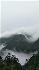 或许你觉得下雨有些讨厌,其实用心体味就会发现雨中的三清山早已美成了一幅画。信心和兴致高涨起来了,雨中