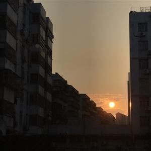 夹缝中的日出