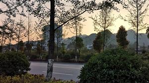 手机拍摄之夕阳西下
