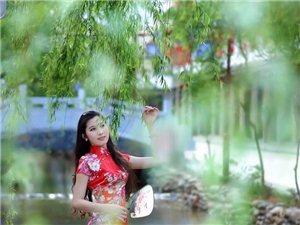 春�L拂柳婧妖��
