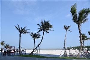 参加珠海华发绿洋湾休闲摄影活动,交几张作业