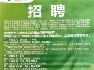 ��南金豆子蔬菜食品有限公司最新招聘