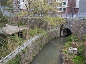 原来,在城市的?#36141;?#27827;道上,可以跨越建房,难怪,育红桥河,在流汗。(生态环境人与自然互相伤害??)