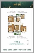 招华睿府纯电梯洋房约117-135m2低密专梯美宅,16层高,学区房,坐北朝南,双阳台,容积率只有1