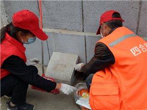 【第119期】寺坡街道九九山社区积极开展鼠药投放工作