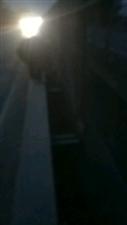 冀午线106桥上一老人不知道干啥呢这是