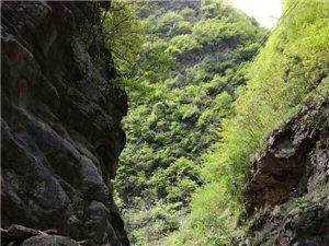 """灵秀山阳""""七里峡――石峡线天""""山阳县副县长的山水情缘"""