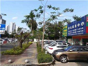 候鸟服务中心:汽车租赁