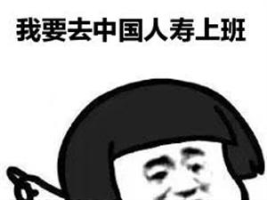 ????中国人寿招聘助理,导师,主管,业务员,面试过关21号开始培训,重要的是免费培训还有保底