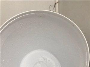 出售18L塑料桶(不含�w)