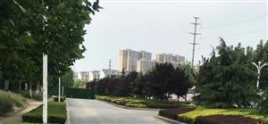莲旺街路段施工??,北向南封路,大家可以绕路大名城南区南门……走单身公寓后