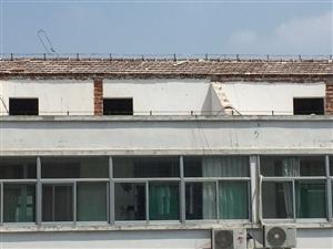 瑞阳北区违章建设