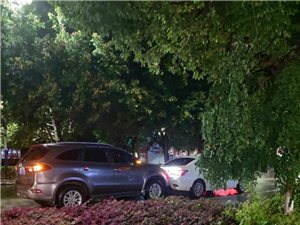 礼让行人导致追尾,是谁惹的祸?昨晚发生三连环追尾事故,雨天路滑司机们请保持车距!