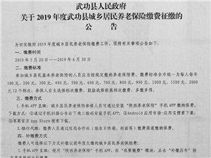 2019年度武功县城乡居民养老保险缴费征缴公告