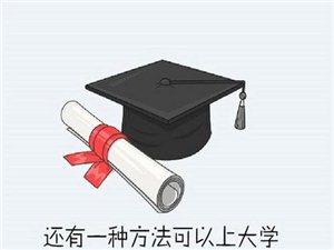 也许,你离成功就差一个学历!
