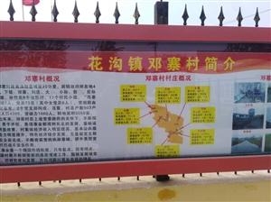涡阳县花沟镇:多措并举夯实基础党建基础