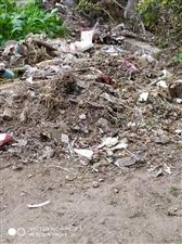 【已回复】�F在全国环境整治,而潢川县草湖北苑一期等小区生活拉圾成山